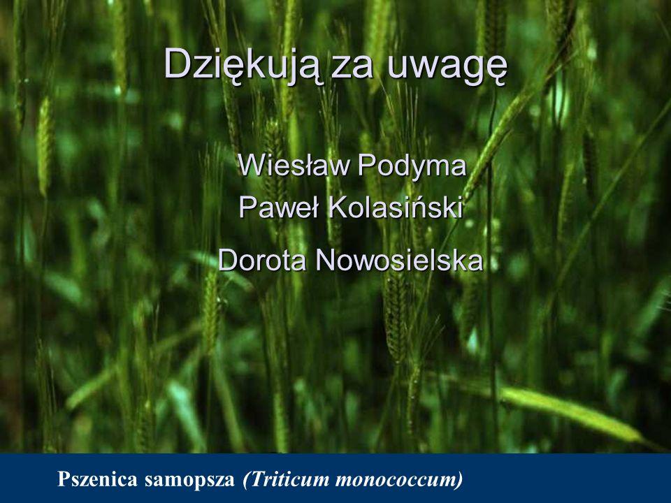 Dziękują za uwagę Wiesław Podyma Paweł Kolasiński Dorota Nowosielska