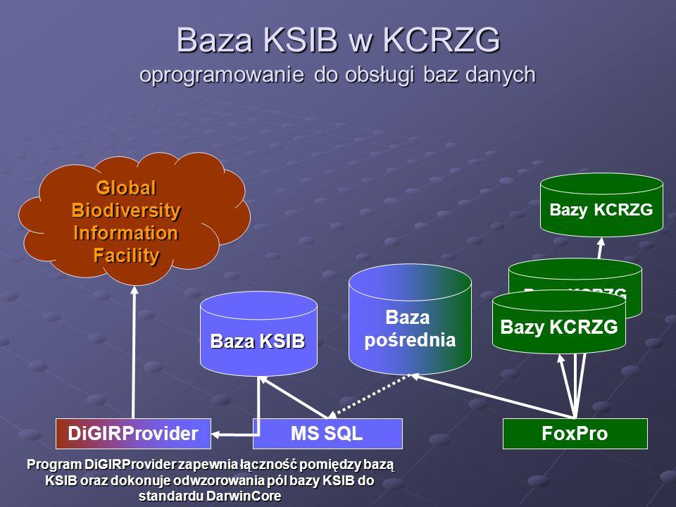 Baza KSIB w KCRZG oprogramowanie do obsługi baz danych