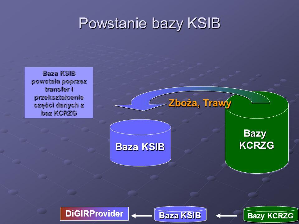 Powstanie bazy KSIB Zboża, Trawy Bazy KCRZG Baza KSIB DiGIRProvider
