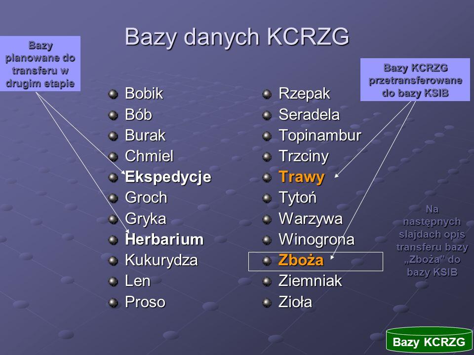 Bazy danych KCRZG Bobik Bób Burak Chmiel Ekspedycje Groch Gryka