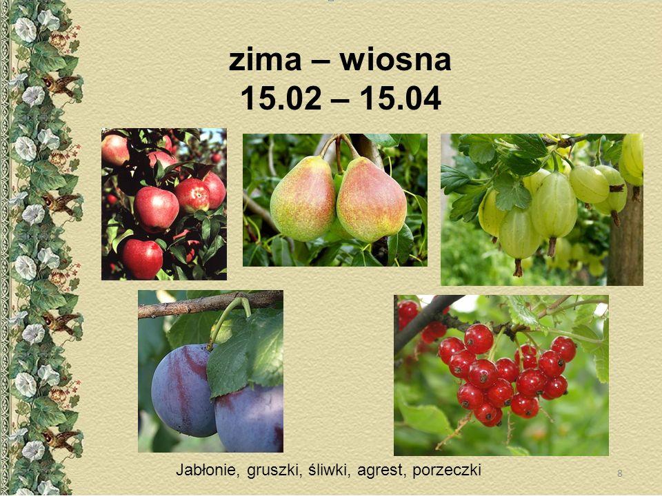 zima – wiosna 15.02 – 15.04 Jabłonie, gruszki, śliwki, agrest, porzeczki