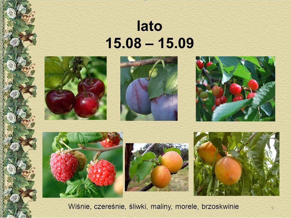 lato 15.08 – 15.09 Wiśnie, czereśnie, śliwki, maliny, morele, brzoskwinie
