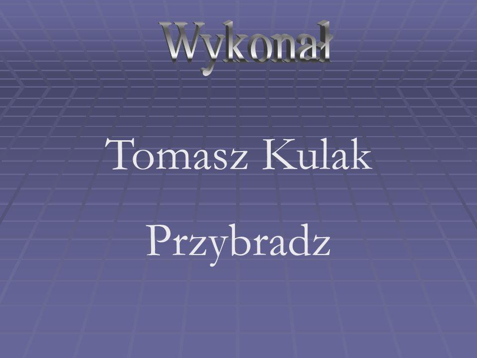 Wykonał Tomasz Kulak Przybradz