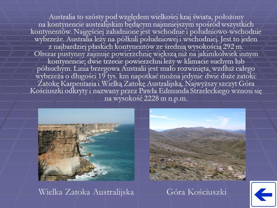 Wielka Zatoka Australijska