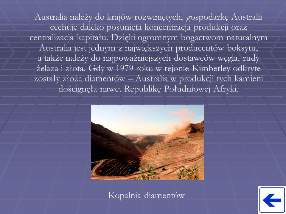 Australia należy do krajów rozwiniętych, gospodarkę Australii cechuje daleko posunięta koncentracja produkcji oraz centralizacja kapitału. Dzięki ogromnym bogactwom naturalnym Australia jest jednym z największych producentów boksytu, a także należy do najpoważniejszych dostawców węgla, rudy żelaza i złota. Gdy w 1979 roku w rejonie Kimberley odkryte zostały złoża diamentów – Australia w produkcji tych kamieni doścignęła nawet Republikę Południowej Afryki.