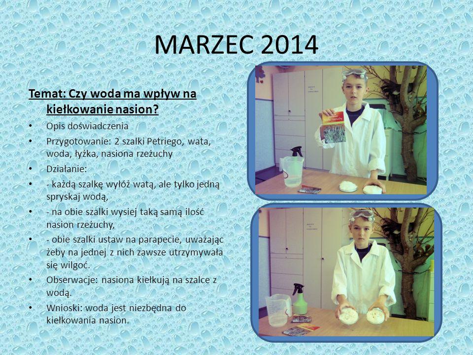 MARZEC 2014 Temat: Czy woda ma wpływ na kiełkowanie nasion