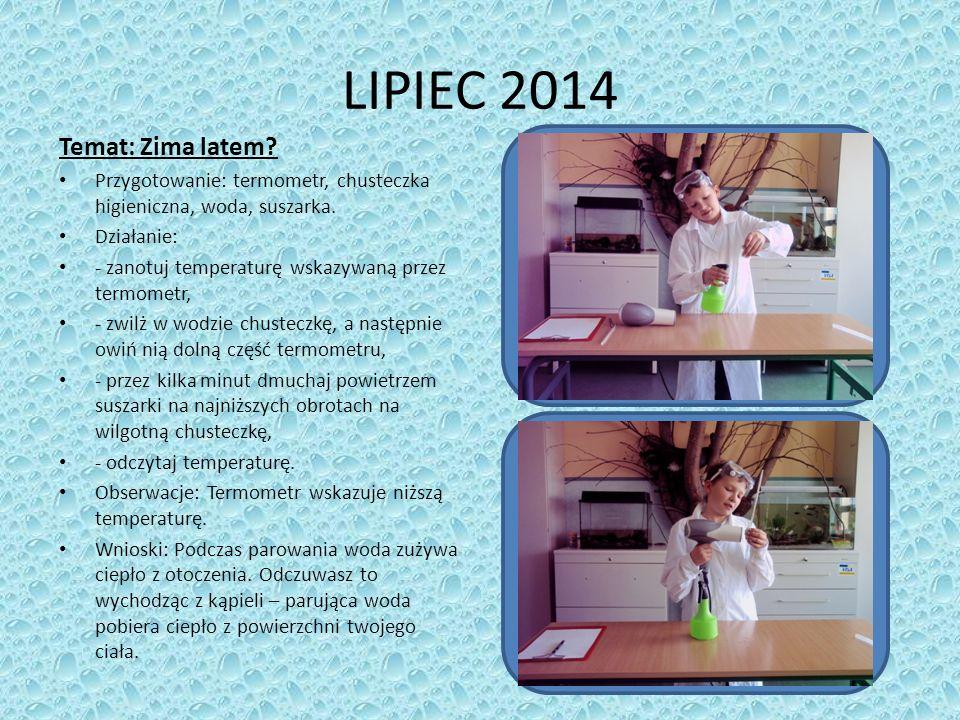 LIPIEC 2014 Temat: Zima latem