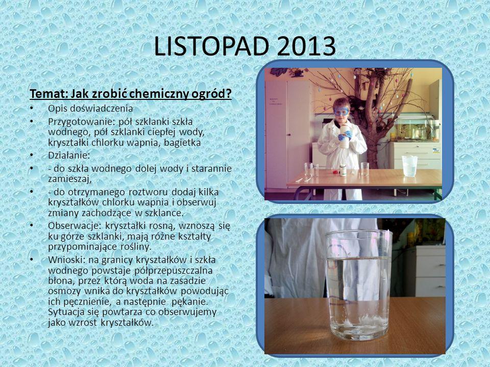 LISTOPAD 2013 Temat: Jak zrobić chemiczny ogród Opis doświadczenia