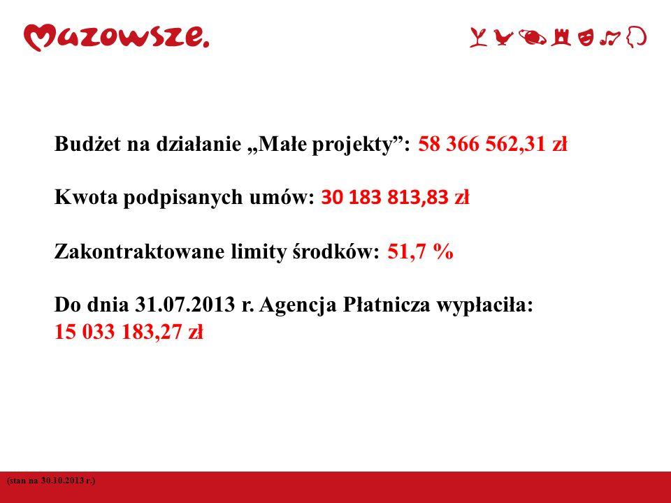 """Budżet na działanie """"Małe projekty : 58 366 562,31 zł"""