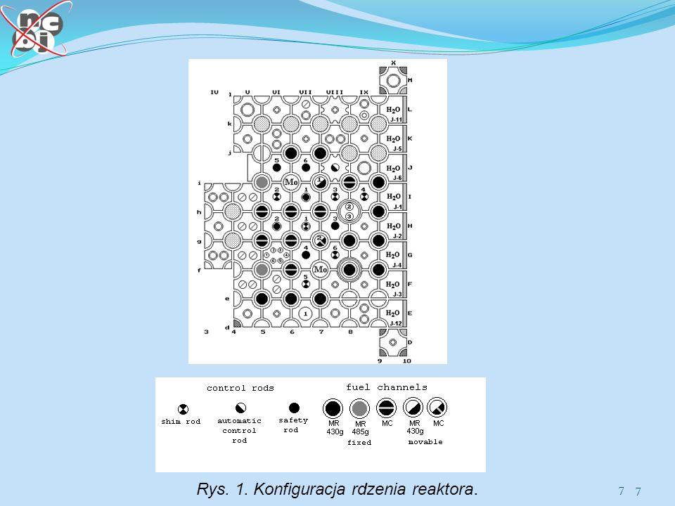 Rys. 1. Konfiguracja rdzenia reaktora.