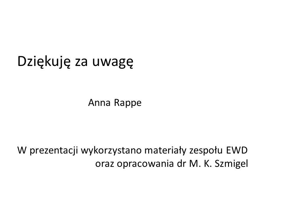 Dziękuję za uwagę Anna Rappe