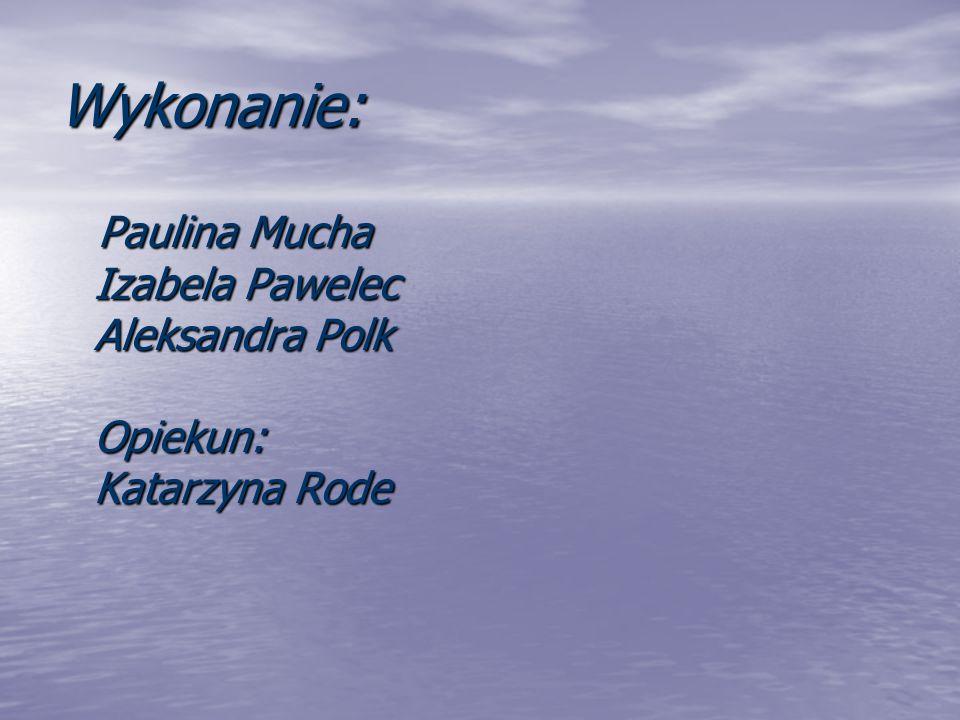 Wykonanie: Paulina Mucha Izabela Pawelec Aleksandra Polk Opiekun: Katarzyna Rode