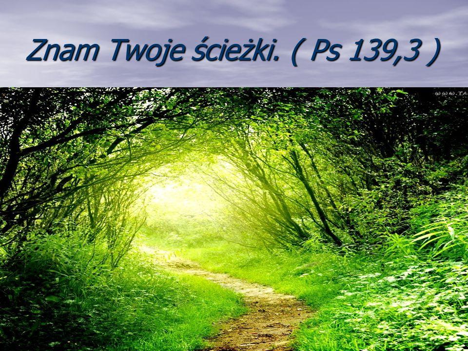 Znam Twoje ścieżki. ( Ps 139,3 )