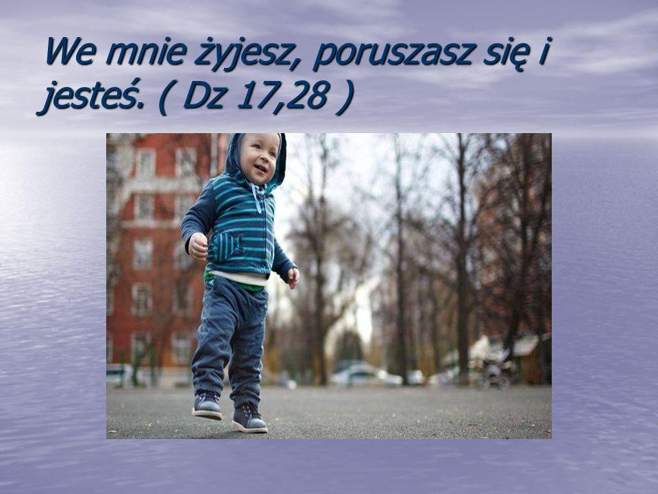 We mnie żyjesz, poruszasz się i jesteś. ( Dz 17,28 )
