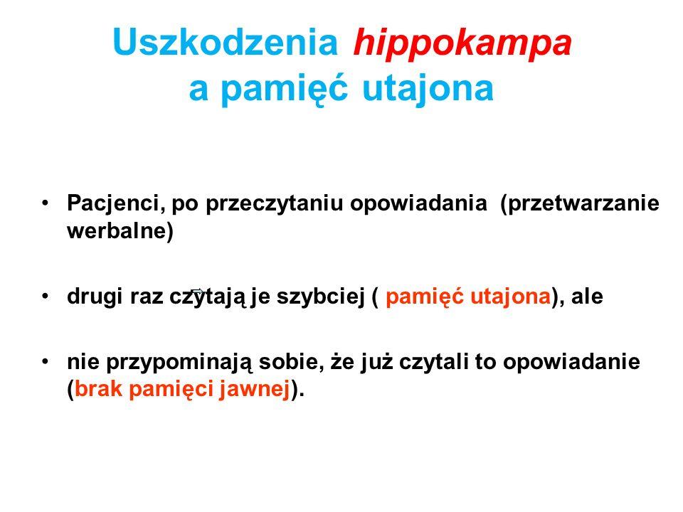 Uszkodzenia hippokampa a pamięć utajona