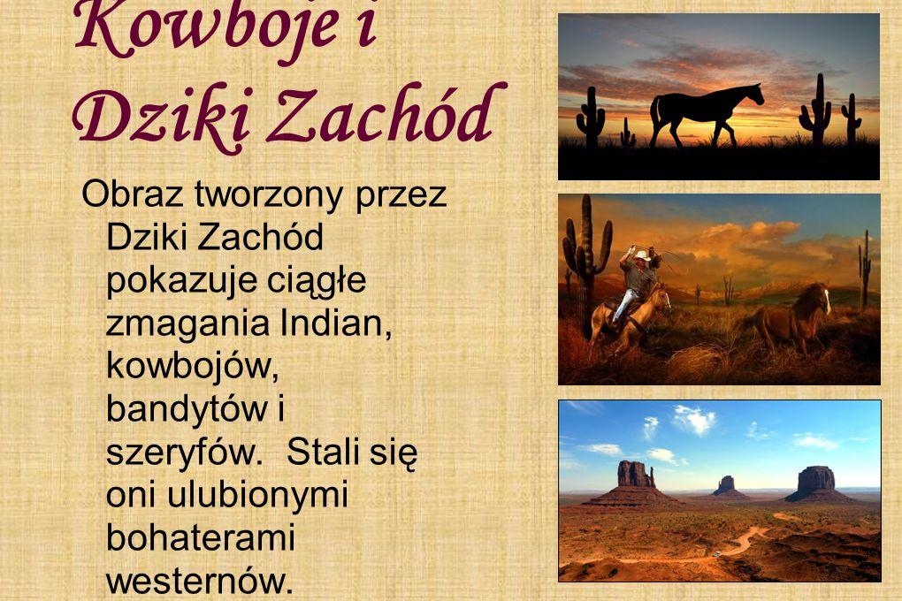 Kowboje i Dziki Zachód