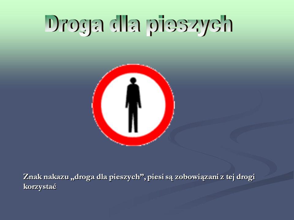 """Droga dla pieszych Znak nakazu """"droga dla pieszych , piesi są zobowiązani z tej drogi korzystać"""