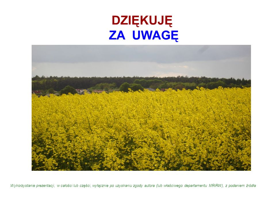 DZIĘKUJĘ ZA UWAGĘ Kazimierz Żmuda - MRiRW - 2008-09-30
