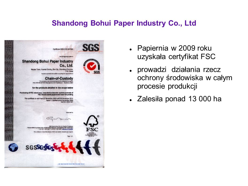 Shandong Bohui Paper Industry Co., Ltd