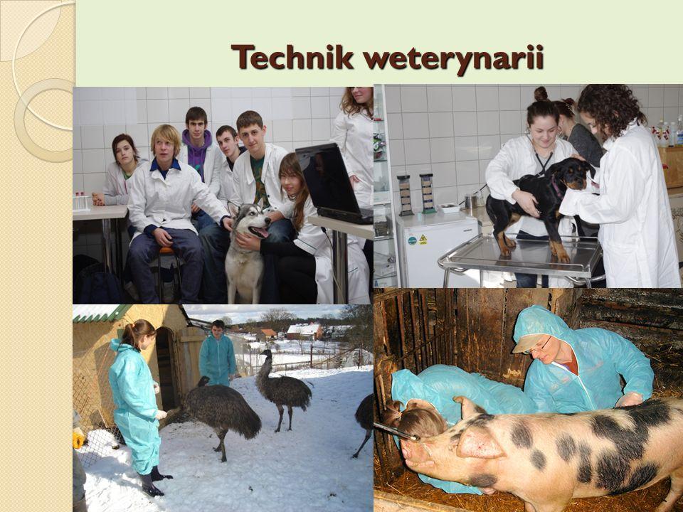 Technik weterynarii