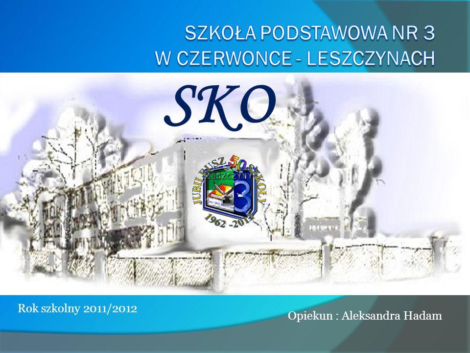Szkoła Podstawowa nr 3 w Czerwonce - Leszczynach