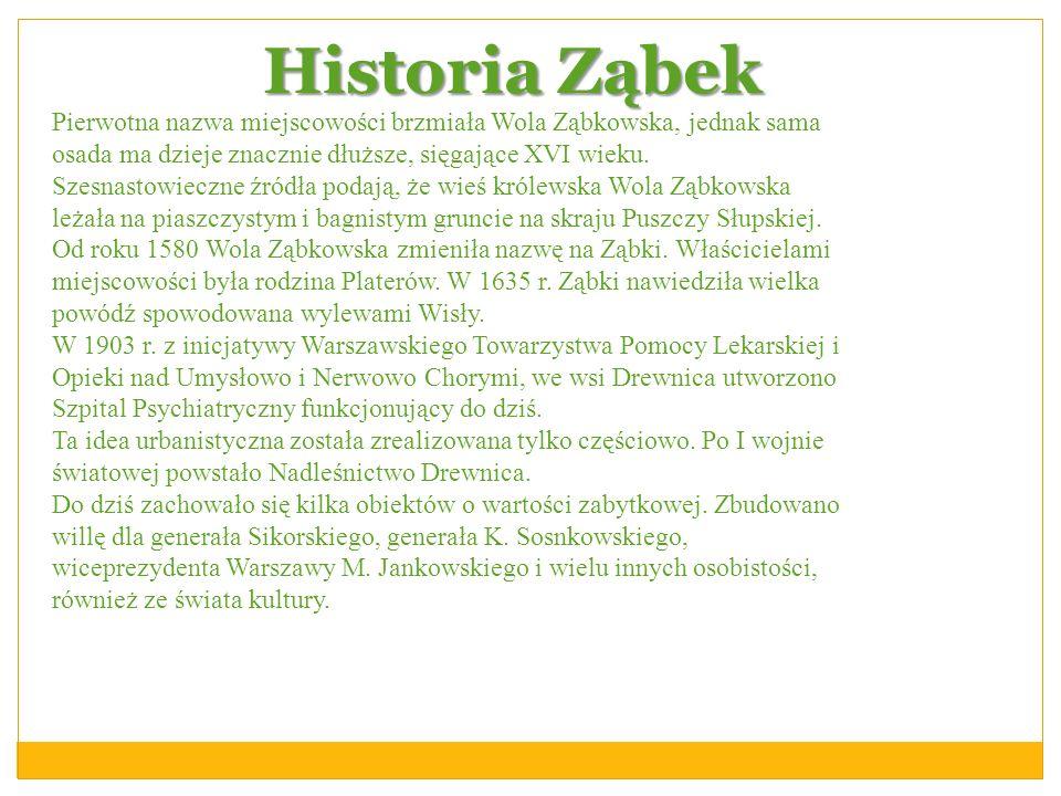Historia Ząbek