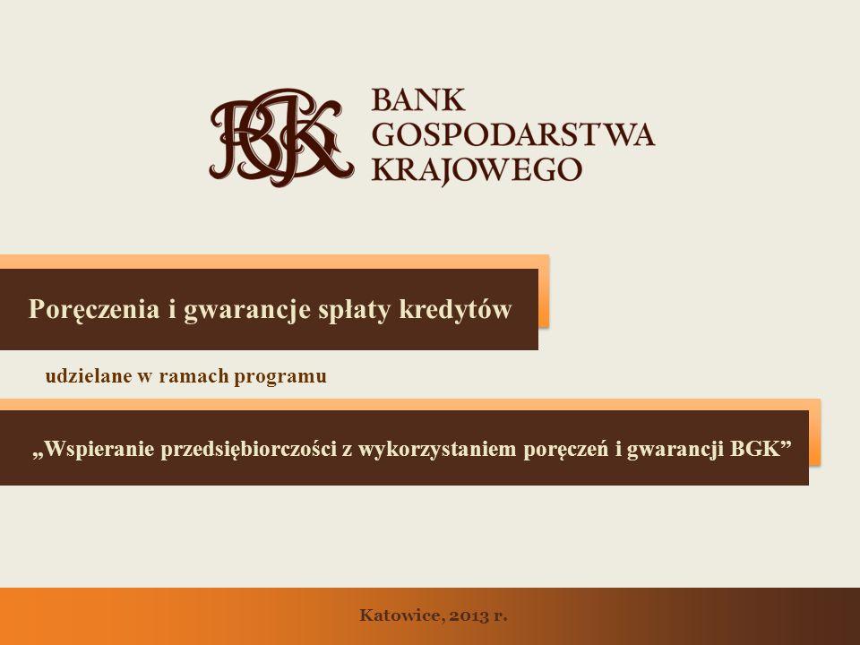 Poręczenia i gwarancje spłaty kredytów