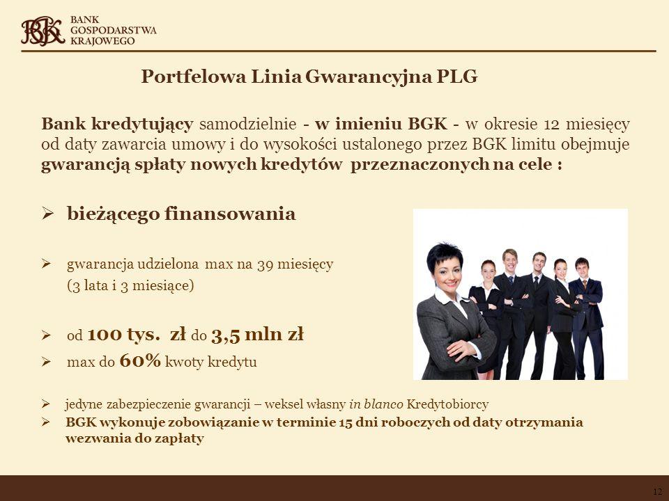 Portfelowa Linia Gwarancyjna PLG