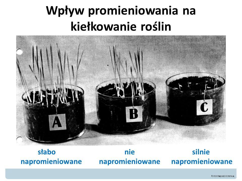 Wpływ promieniowania na kiełkowanie roślin