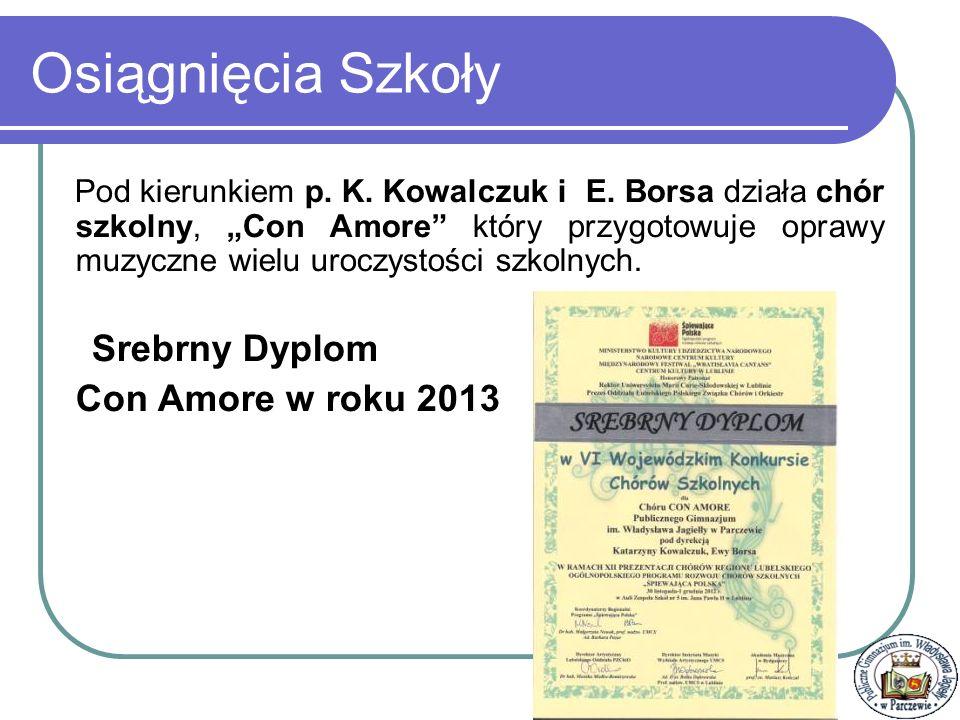 Osiągnięcia Szkoły Con Amore w roku 2013 Srebrny Dyplom