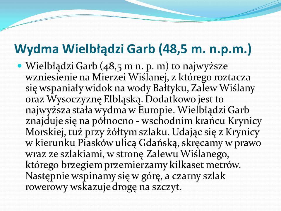 Wydma Wielbłądzi Garb (48,5 m. n.p.m.)