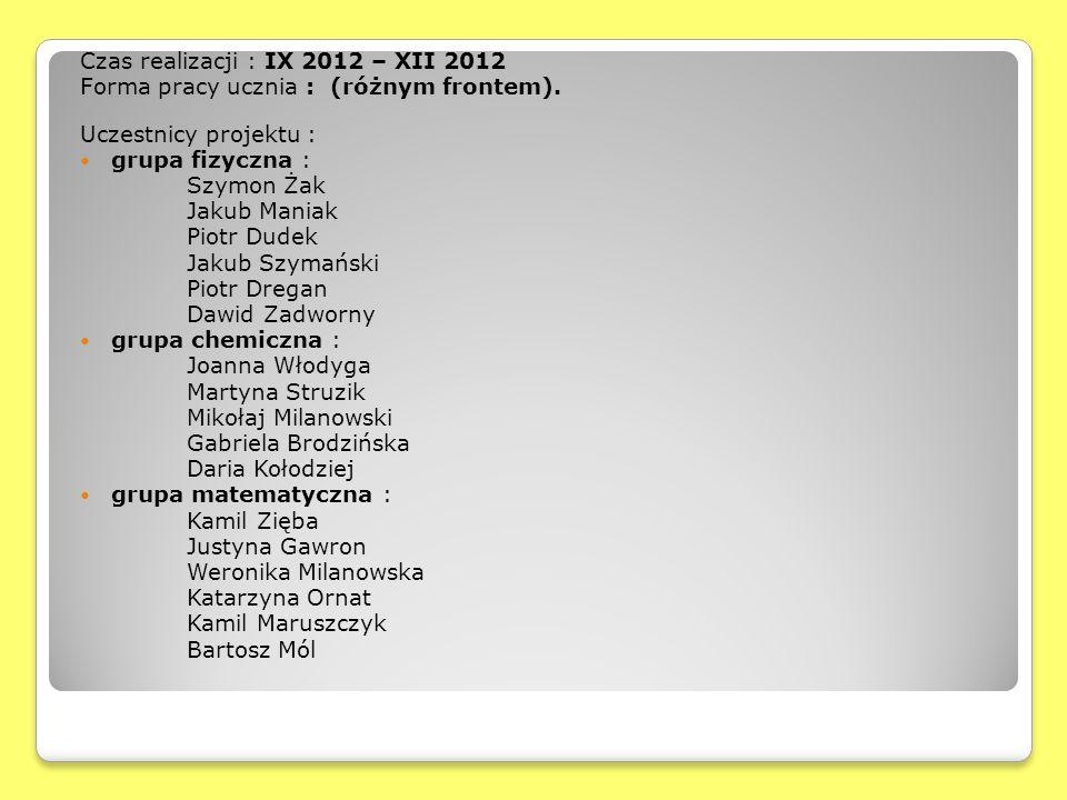 Czas realizacji : IX 2012 – XII 2012