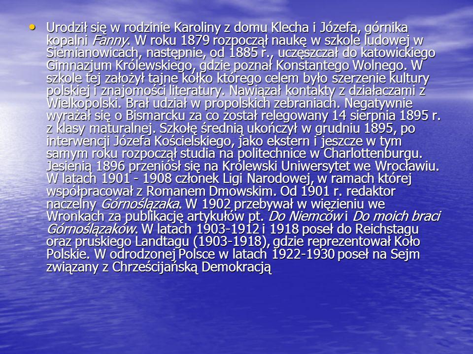 Urodził się w rodzinie Karoliny z domu Klecha i Józefa, górnika kopalni Fanny.