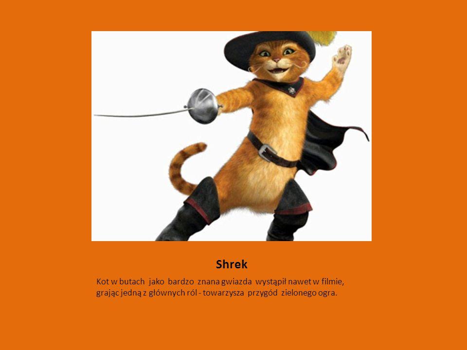 Shrek Kot w butach jako bardzo znana gwiazda wystąpił nawet w filmie, grając jedną z głównych ról - towarzysza przygód zielonego ogra.