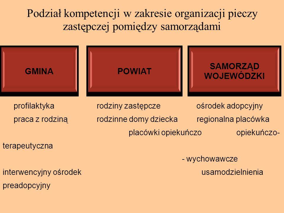 Podział kompetencji w zakresie organizacji pieczy zastępczej pomiędzy samorządami