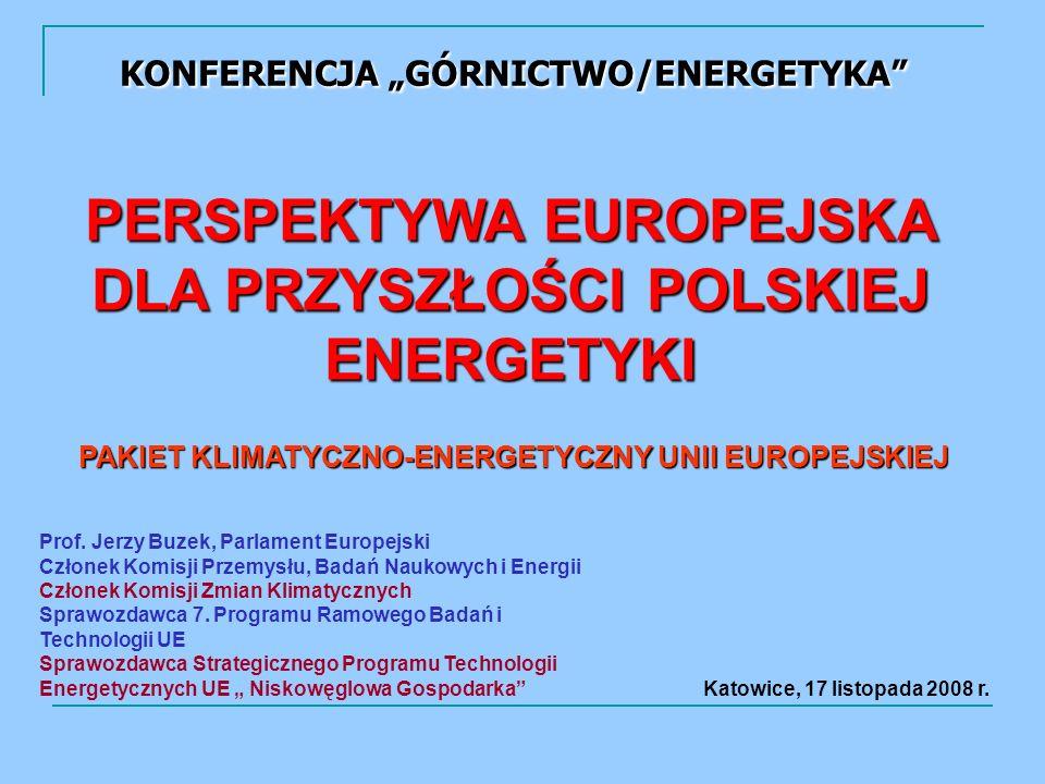 PERSPEKTYWA EUROPEJSKA DLA PRZYSZŁOŚCI POLSKIEJ ENERGETYKI