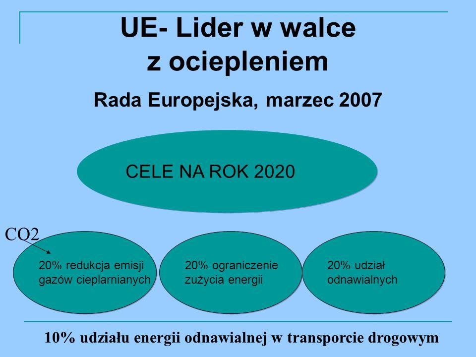 UE- Lider w walce z ociepleniem Rada Europejska, marzec 2007