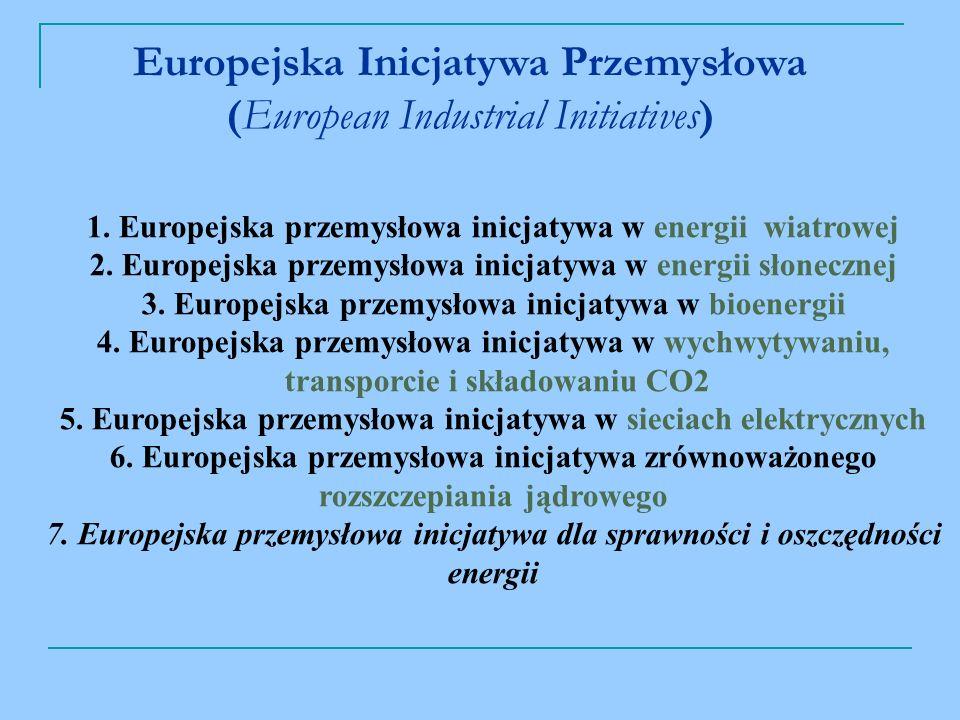 Europejska Inicjatywa Przemysłowa (European Industrial Initiatives)