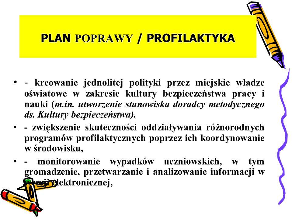 PLAN POPRAWY / PROFILAKTYKA