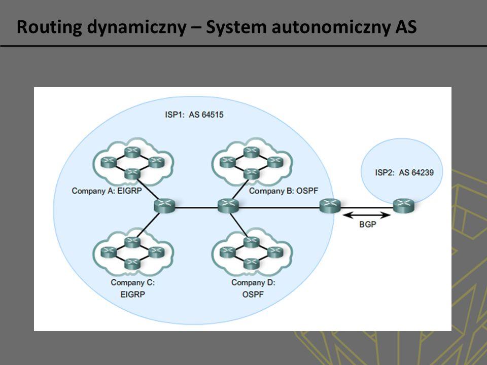 Routing dynamiczny – System autonomiczny AS