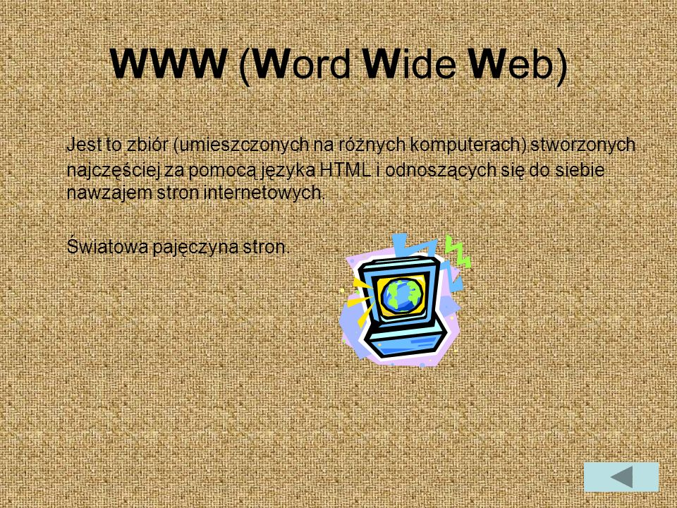 WWW (Word Wide Web)