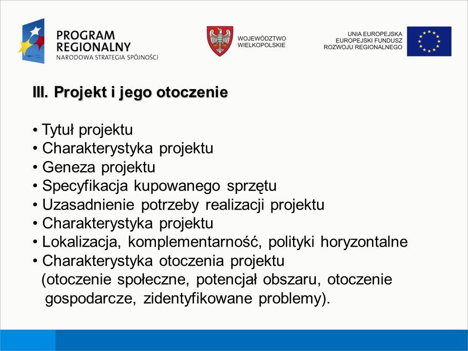 III. Projekt i jego otoczenie