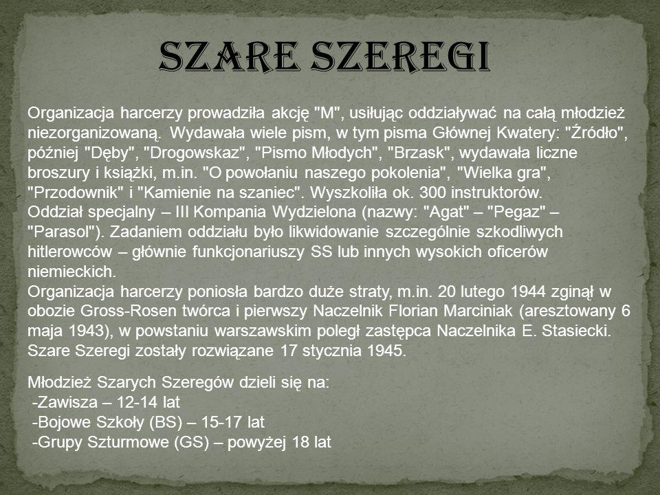 SZARE SZEREGI