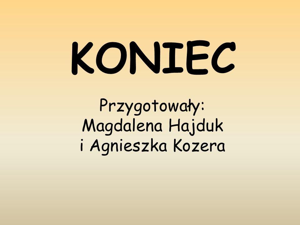 KONIEC Przygotowały: Magdalena Hajduk i Agnieszka Kozera