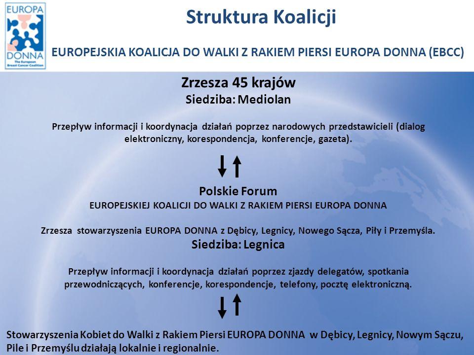 Struktura Koalicji Zrzesza 45 krajów