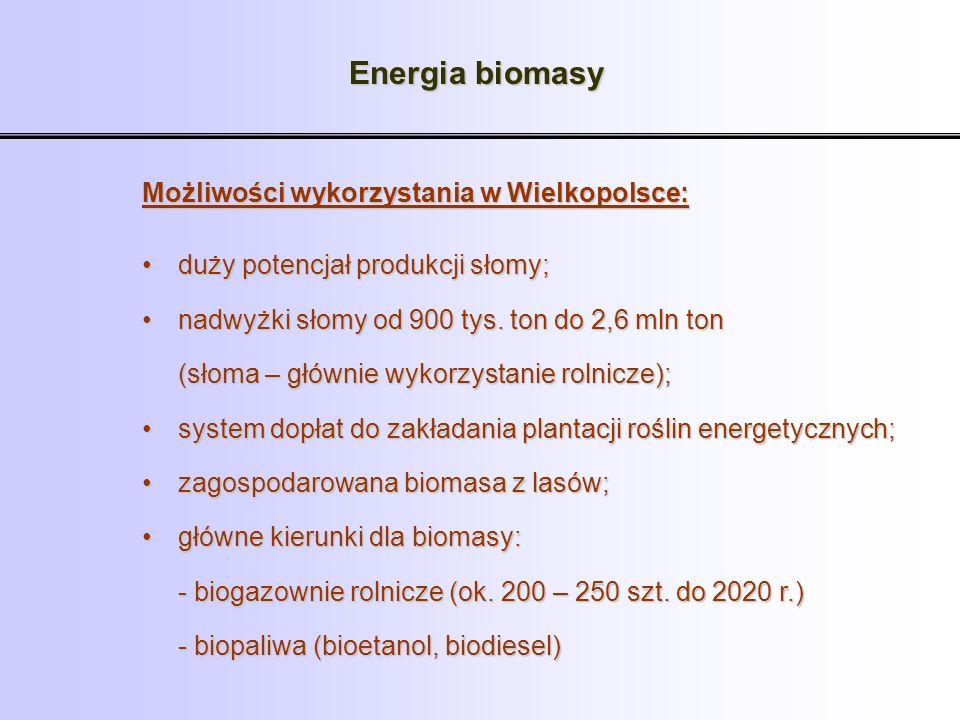 Energia biomasy Możliwości wykorzystania w Wielkopolsce: