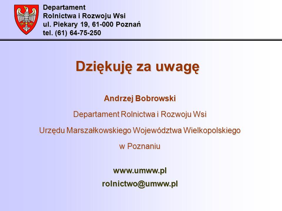 Dziękuję za uwagę Andrzej Bobrowski