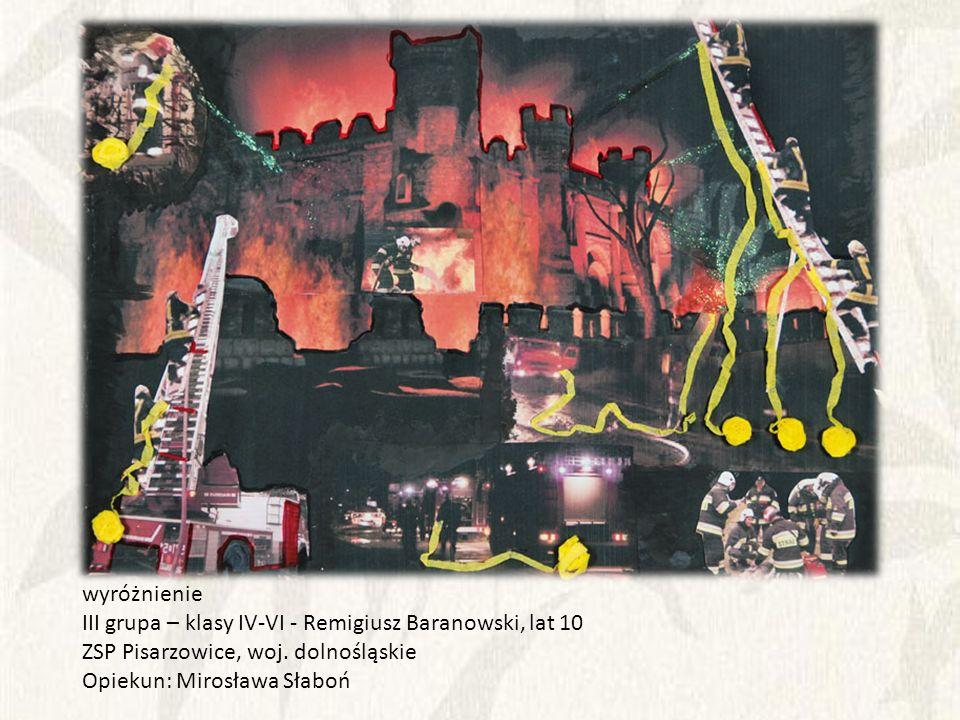 wyróżnienie III grupa – klasy IV-VI - Remigiusz Baranowski, lat 10. ZSP Pisarzowice, woj. dolnośląskie.
