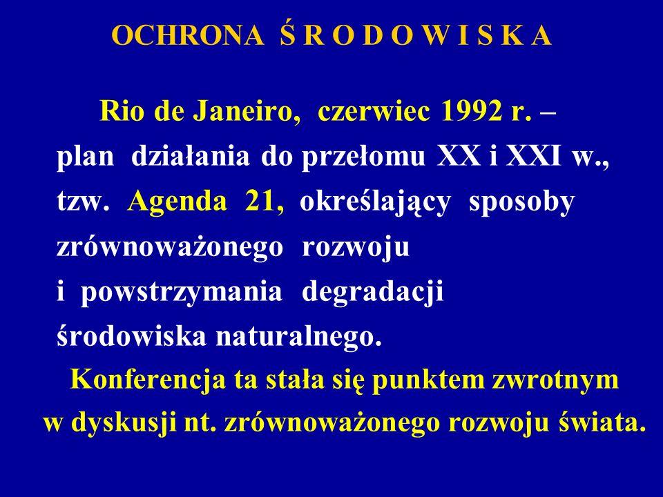 plan działania do przełomu XX i XXI w.,