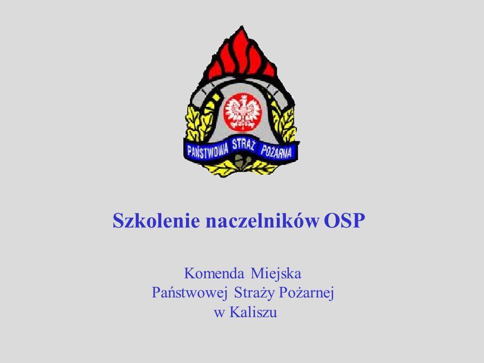 Szkolenie naczelników OSP